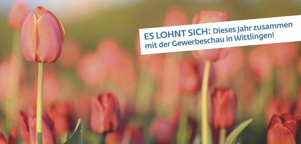Frühlingsfest 2019 am 23. und 24. März! – Eder Wohnmobile in Bad Urach-Wittlingen